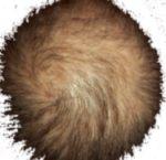 En ful frisyr som ser ut som könshår.