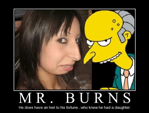 samliv-mr-burns
